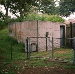SF Zoo (bior) Tags: zoo sanfrancisco sfzoo sanfranciscozoo portra160vc hasselblad500cm kodakportra expiredfilm mediumformat 120 6x6cm