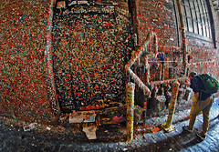Seattle Gum Wall (Infinity & Beyond Photography) Tags: seattle market place theatre theater gum wall gumwall chewinggum touristattraction 8mm samyang fisheye lens photos postalley alley