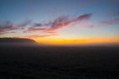 _DSC9485-HDR.jpg (thomasresch) Tags: sonneaufgang sun nordhaide panzerwiese nebel hartelholz sunrise sonne