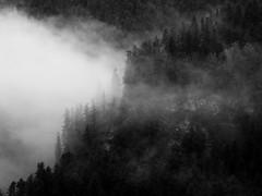 Enténébré (alexiscrozier1) Tags: mystic photographe art alexiscrozier france queyras noiretblanc mountain nature landscape hautesalpes alpes provencealpescotesdazur bnw montagne brouillard fog sombre dark