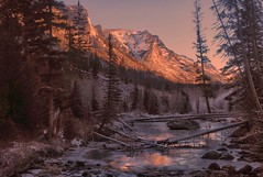 ~Welcome, winter. (cowgirlrightup) Tags: takenwhileoutsearching fordeadfallforthestove ice glow dawn mountains chilledbreath latedawn november cowgirlrightup canada alberta canon7d