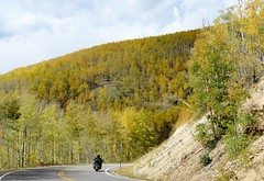 Out on the Golden Road (Patricia Henschen) Tags: gunnisonnationalforest gunnison nationalforest silverthreadscenicbyway scenicbyway silverthread fall fallcolor autumn leafpeeping lakecity colorado co149 road motorcycle aspen forest trip motorcyclist clouds