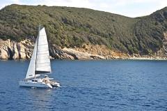 Catamarano ed Elba (manuelfanciullacci) Tags: isoladelba canaledellelba barche mare provinciadilivorno li italia toscana europa nikond5100 manuelfanciullacci turismo