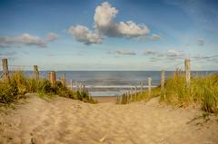 Beach Katwijk (metsemakers) Tags: katwijk sony a7ii tamron sea beach summer water