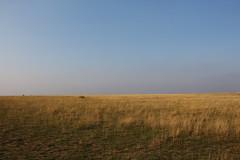 Le bout du monde (FrançoiseEve) Tags: sol herbe jaune soleil sec horizon ciel