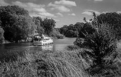 2018-08-19 & 20 Agilux Shillingford & Oxford (23 of 26) (Pete K) Tags: agilux agimatic shillingford boat grass river thames trees