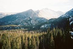 Rockies (Juan Ordonez) Tags: 35mm film analog kodak olympusxa portra 400 color mountains forest mountain trees tree pine mountainside national park 35mmfilm rockies rmnp snow