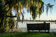 Boyd Hill Nature Preserve (MJ6606) Tags: grass trees landscape view nature water bench sky cityscape lake fall morning florida stpetersburg unitedstates us