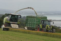 Claas Jaguar 970 SPFH filling a Broughan Engineering Mega HiSpeed Trailer drawn by a Claas Arion 650 Tractor (Shane Casey CK25) Tags: claas jaguar 970 spfh filling broughan engineering mega hispeed trailer drawn arion 650 tractor self propelled forage harvester wholecrop whole crop spring barley whitegate traktor traktori tracteur trekker trator tillage ciągnik silage silage18 silage2018 grass grass18 grass2018 winter feed fodder county cork ireland irish farm farmer farming agri agriculture contractor field ground soil earth cows cattle work working horse power horsepower hp pull pulling cut cutting lifting machine machinery nikon d7200