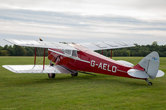 Hornet Moth (Aeroplanes Everywhere) Tags: aircraft biplane generalaviation airshows singleenginedaircraft canoneos5dmark3 aviation pistonenginedaircraft raceday 24mm105mm oldwarden