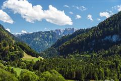 Fribourg Prealps (Bephep2010) Tags: 2018 7markiii alpha berg freiburg fribourg prealps sel24105g schweiz sommer sony switzerland valdecharmey voralpen wald forest mountain summer ⍺7iii charmey kantonfreiburg ch