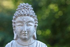 May the light be with you (W@nderluster) Tags: macro bokeh dof depthoffield canon eos statue buddha 1300d 24105mm white light green peace religion italy italia piedmont piemonte portrait