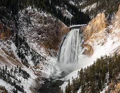 Lower Falls ((JAndersen)) Tags: waterfall water canyon grandcanyonoftheyellowstone yellowstone national park wyoming usa landscape snow river
