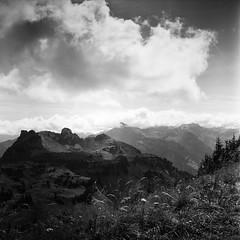 more than a thousand words (gato-gato-gato) Tags: 35mm 6x6 alpen berge berneroberland carlzeisstessar13575mm grindelwald iso400 ilford ls600 mxevs noritsu noritsuls600 rolleiflex tlr alps analog analogphotography believeinfilm film filmisnotdead filmphotography gatogatogato gatogatogatoch homedeveloped mediumformat mountaineering nature tobiasgaulkech wwwgatogatogatoch bern schweiz ch black white schwarz weiss bw blanco negro monochrom monochrome blanc noir streetphotography street strasse strase onthestreets streettogs streetpic streetphotographer mensch person human pedestrian fussgänger fusgänger passant switzerland suisse svizzera sviss zwitserland isviçre zuerich zurich zurigo zueri landschaft landscape landscapephotography outdoorphotography