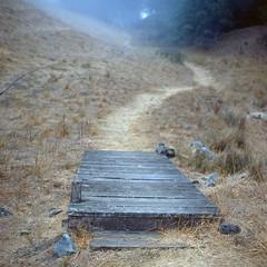 Bridge to a foggy end (Tpstearns) Tags: film 120 portra400 tlr rolleiflex35f square6x6 mediumformat