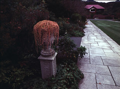 Yuni garden in autumn (threepinner) Tags: yunigarden yuni hokkaidou hokkaido northernjapan japan park mamiya m645 sekor 45mm f28 positive selfdeveloped cloudy 由仁 由仁町 ゆにガーデン 北海道 北日本