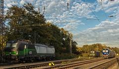 01_2018_10_15_Wanne_Eickel_Üwf_6193_830_6193_255_ELOC_6193_495_BLSC_495_6193_725_ELOC (ruhrpott.sprinter) Tags: ruhrpott sprinter deutschland germany allmangne nrw ruhrgebiet gelsenkirchen lokomotive locomotives eisenbahn railroad rail zug train reisezug passenger güter cargo freight fret herne wanne eickel wanneeickel üwf 6193 blsc eloctxl blau himmel outdoor logo natur wolken