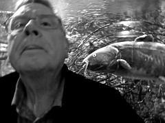 Out of Focus Self-Portrait With a Catfish Approaching (ricko) Tags: selfportrait catfish aquarium bw cabelas kansascity kansas 2018 292365