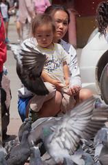 Pigeon Party (peterkelly) Tags: digital asia canon 6d gadventures transmongolianadventure mongolia ulaanbaatar gandanmonastery mother daughter child pigeons birds bird
