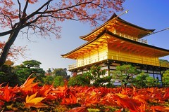 金閣寺 (Kinkaku-ji) (勇 YoungAdventure) Tags: japan japon nippon 日本 일본 kyoto 京都 金閣寺 鹿苑寺 교토 紅葉 autumn foliage 秋 fall kinkakuji cc golden pavilion temple buddhist unesco