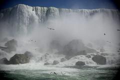 DSC_3852b (John Donges) Tags: niagarafalls canada newyork waterfall