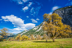 The right time to be here (*Capture the Moment*) Tags: 2018 austria autumn eng fotowalk grosserahornboden herbst october oktober sonya7miii sonya7m3 sonya7iii sonyfe1635mmf4zaoss sonyilce7m3 österreich
