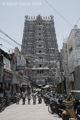 Madurai - Meenakshi Temple (CATDvd) Tags: nikond7500 bhāratgaṇarājya india índia madurai மதுரை tamilnadu tamiḻnāṭu தமிழ்நாடு republicofindia repúblicadelíndia repúblicadelaindia भारतगणराज्य september2018 catdvd davidcomas httpwwwdavidcomasnet httpwwwflickrcomphotoscatdvd architecture arquitectura building edifici edificio