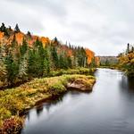 Fall in Adirondacks thumbnail