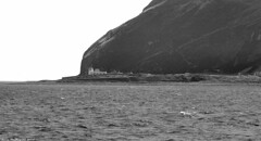 Scotland West Coast the lighthouse and buildings on the island of Ailsa Craig 1 July 2018 by Anne MacKay (Anne MacKay images of interest & wonder) Tags: scotland west coast sea lighthouse buildings island ailsa craig monochrome blackandwhite mountain landscape 1 july 2018 picture by anne mackay