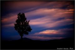 Fragmente der Hoffnung... (SHADOWY HEAVEN Aya) Tags: 1607257ha1829 風景写真 北海道 hokkaido 日本 ファインダー越しの私の世界 写真好きな人と繋がりたい 写真撮ってる人と繋がりたい 写真の奏でる私の世界 coregraphy japan tokyocameraclub igers igersjp phosjapan picsjp 空 雲 dark outdoor landscape paysage cloud clouds sky sunset dusk tree trees