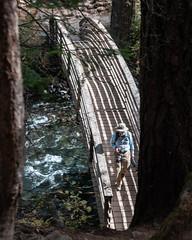 Bridge_120007 (gpferd) Tags: bridge camera construction electronics equipment people plant stream tree water burney california unitedstates us