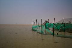 Qatar (ivoräber) Tags: al wakrah beach qatar