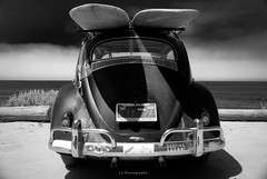The mist crawls from the sea like some primordial phantom of romance (.KiLTRo.) Tags: sanclemente california unitedstates us kiltro volkswagen bettle surf culture beach water auto car old style sanonofre