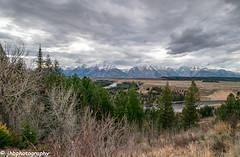 Grand Teton National Park - Fall 2018-41.jpg (jbernstein899) Tags: mountains grandtetonnationalpark hdr trees wyoming