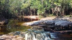 20171108_150807 (terraexperiences) Tags: amazontour amazonia amazonie amazon jungle selva terranossa nordeste northeastern brazilnordeste