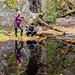 Reflection by Pumpulikirkko