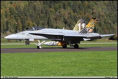F18 C J-5011 TIGER Meiringen octobre 2018 (paulschaller67) Tags: f18 c j5011 tiger meiringen octobre 2018
