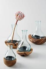 Teak & Bottle Vase (katalaynet) Tags: follow happy me fun photooftheday beautiful love friends