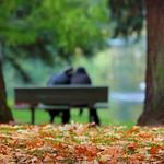 An Autumn Romance thumbnail