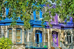 Square Saint-Louis (stephaneblaisphoto) Tags: apartment architectural column architecture blue building exterior built structure city day façade green color growth history nature no people old outdoors plant past tree window