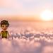 #ElvesDay 14 - Faran in the Snow