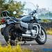 Triumph-Bonneville-Speedmaster-8
