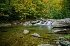 Nature amidst Nature! (Bhargav Kesavan) Tags: nature landscapes longexposure creek stream waterflow flowingwater rock yellow green fall fallfoliage foliage colors vermont stowe drive outdoors photo photography photographer nikon usa