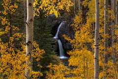 Nellie Creek Falls Framed by Fall (NickSouvall) Tags: gold leaves yellow autumn fall color trees aspens forest aspen tree frame framing waterfall double stream nellie creek falls lake city colorado scenery landscape nature scene view overlook photography photo