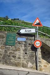 let's hike up the road (Riex) Tags: road route steep raide pente slope mur wall vineyards vignoble signs panneaux villette aran lavaux vaud suisse switzerland g9x