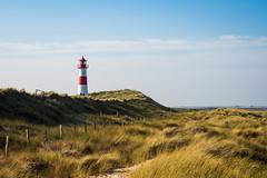Sunkissed Lighthouse (einsenfei) Tags: sylt landscape beach lighthouse sea nordsee grass sky em1ii mft