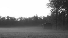 House in the morning mist (hasor) Tags: house mist fog morning monochrome frost sweden