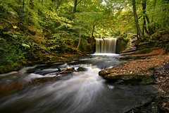 Nant Mill (PentlandPirate of the North) Tags: nantmill coedpoeth wrexham wales waterfall autumn fall clywedogriver