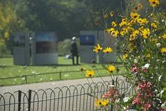 Remembering (dwimagesolutions) Tags: england london stjamespark remembrance bokeh autumn indiansummer nikond200 zoomnikkor1870mmf3545