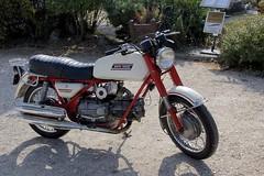 _DSC0100 (Laugia) Tags: motoguzzi falcone